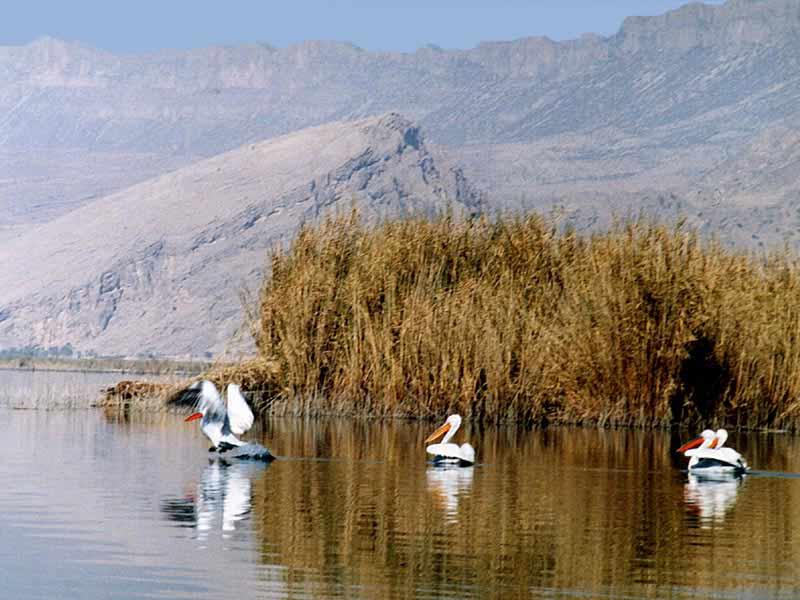 lac parishan