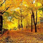 Iran en automne