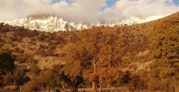 Montagne Zagros
