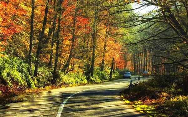 L'automne à Ardabil