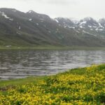 Lac Neor