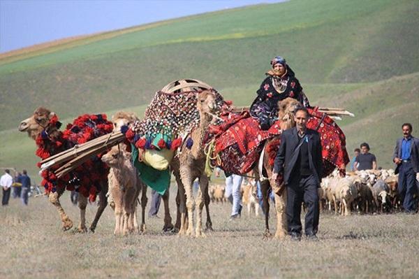 Nomades Shahsavan