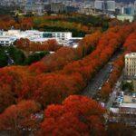 Avenue Valiasr Téhéran